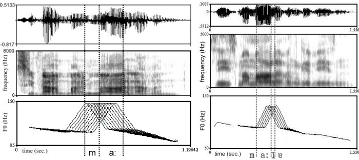 Fig.4 Examples of peak shift continua for the stimulus series aiming at the perceptual changes from early to medial or from medial to late, respectively